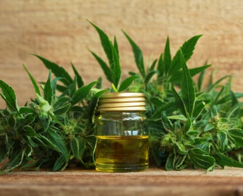 cbd extract oil